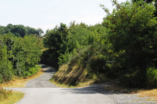 anello di Livergnano, Monte Rosso, ingresso - erbaviola.com