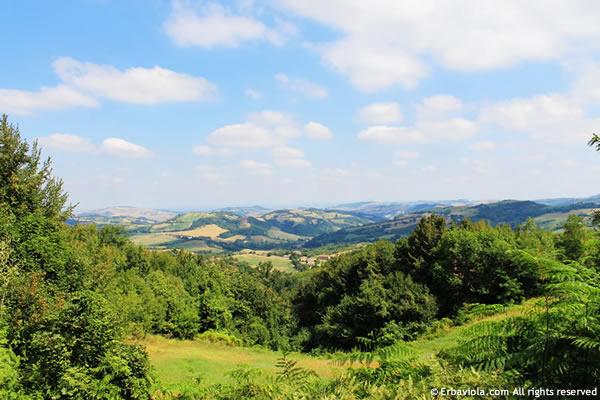vista del Parco del contrafforte pliocenico - erbaviola.com