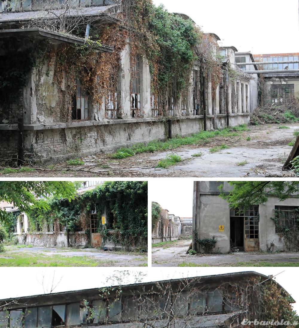 Archeologia industriale Schio (VI)