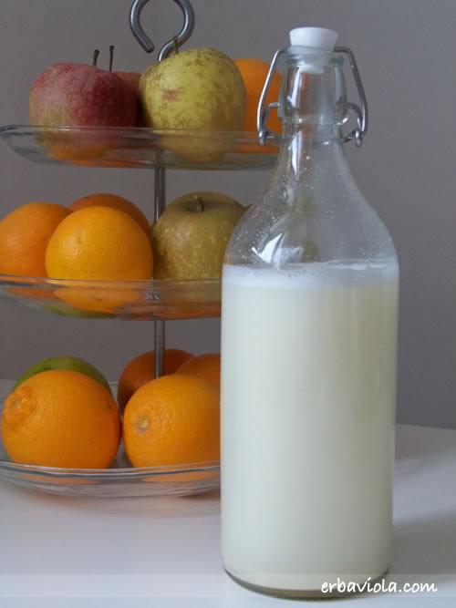 1 lt abbondante di latte di soia