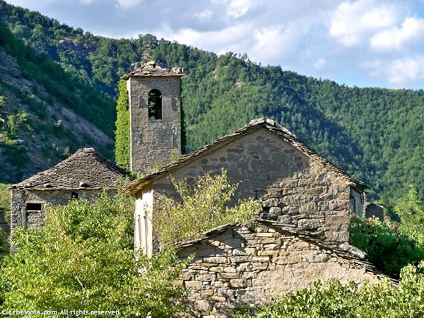 Castiglioncello, la chiesa piccola e case - erbaviola.com