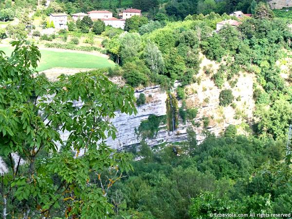 A metà strada per Castiglioncello di Moranduccio - erbaviola.com