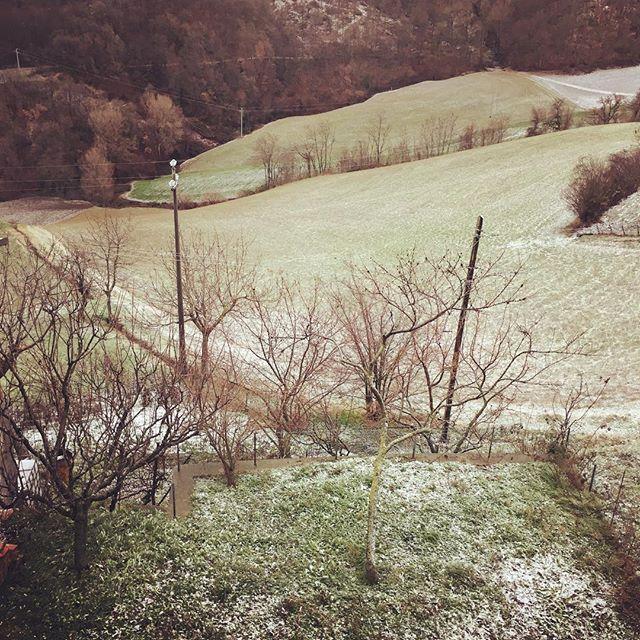 neve 2017 - Libro L'orto naturale