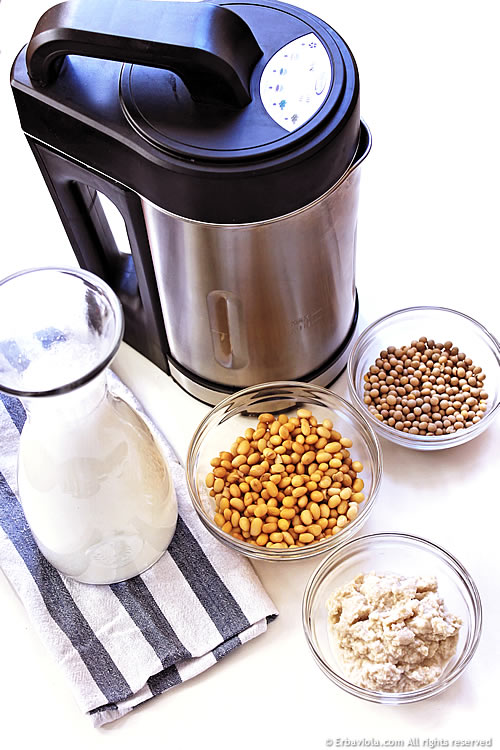 macchina per latte vegetale Veganstar erbaviola.com