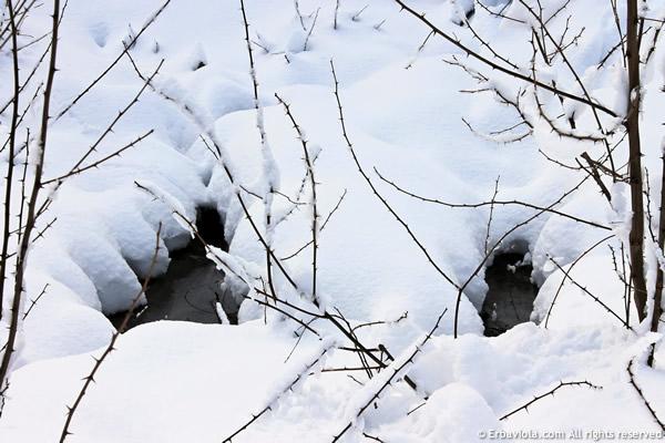 laghetto neve - erbaviola