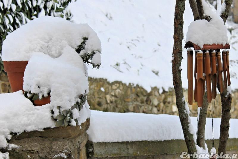 Orto di erbaviola dicembre 2012 casa coccinelle neve