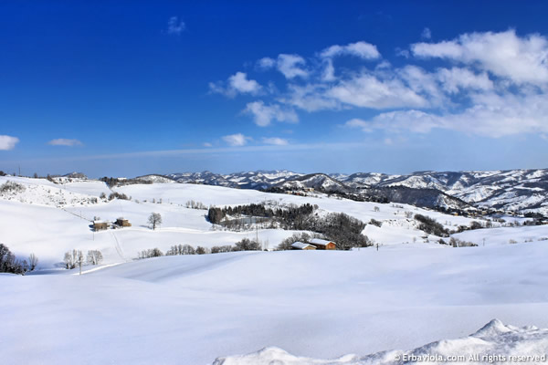 neve, marzo 2013