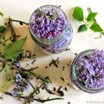 Oleolito di lillà - invaso dei fiori