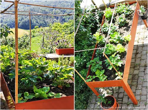 Orto sul balcone tra fragole insalate e rose erbaviola for Fragole piante in vaso