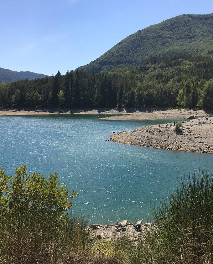 semplicità: il lago, la pineta e due sdraio