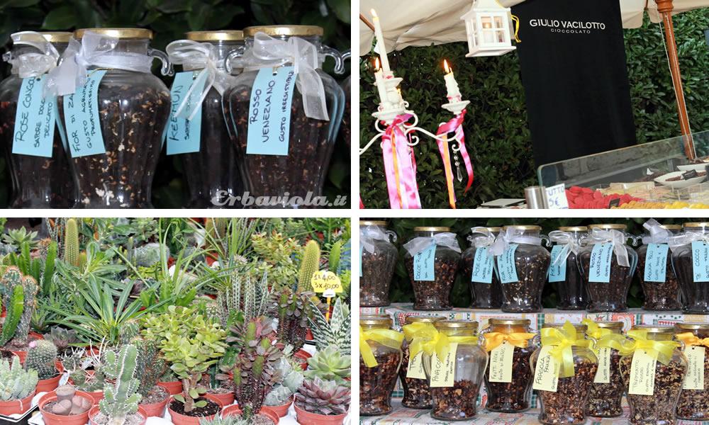 Tisane artigianali, cioccolati prelibati e cactacee a Giardino Jacquard, Schio