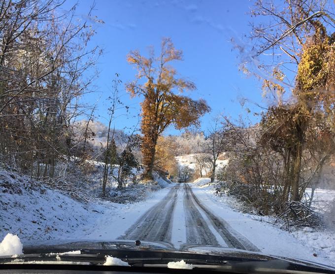 la strada per attraversare il bosco e andare in paese