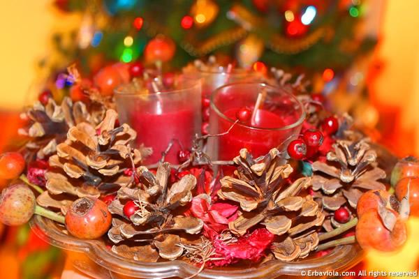 Bacche di rosa, composizione di Yule Natale - erbaviola.com