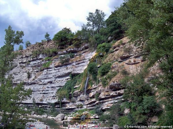 Cascata sul Santerno a Castiglioncello di Moranduccio - erbaviola.com