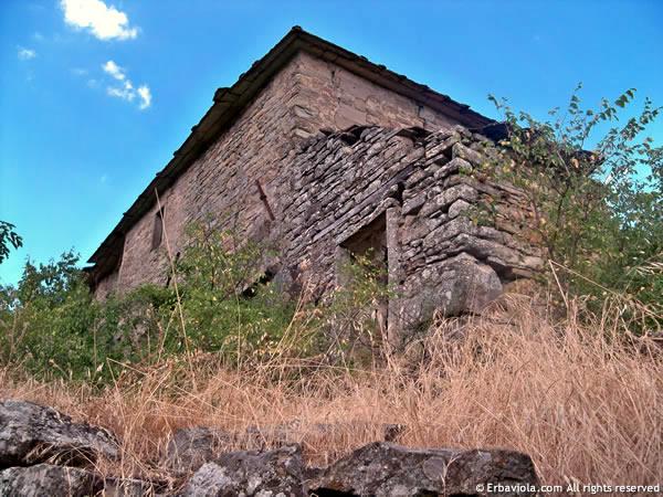 Varco dal sentiero sotto le mura - erbaviola.com