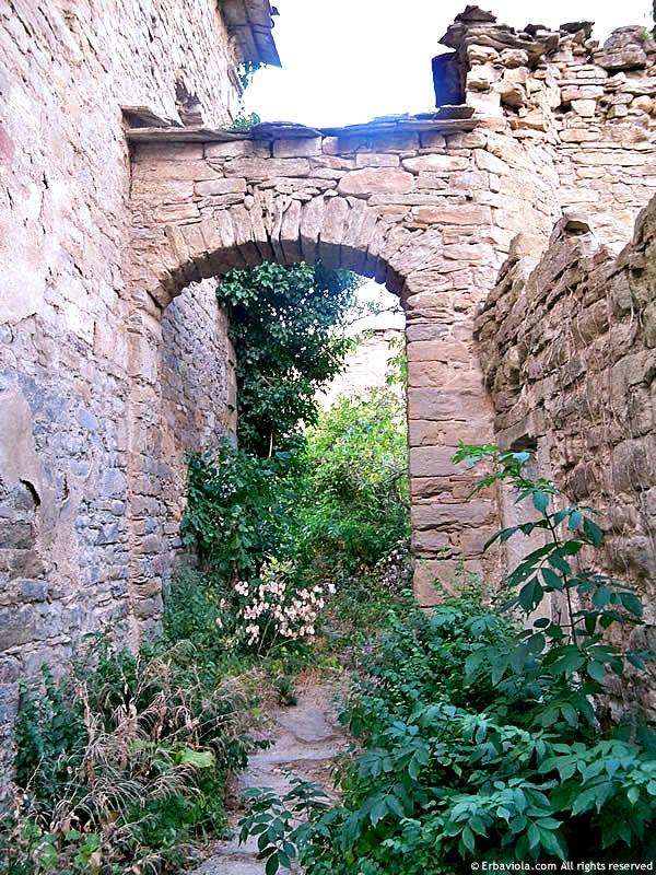 Castiglioncello di Moranduccio, strada con arco in pietra - erbaviola.com