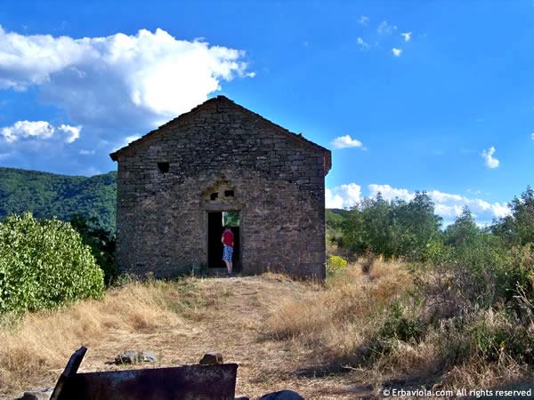 Castiglioncello di Moranduccio - erbaviola.com