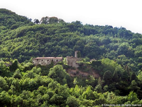 Castiglioncello di Moranduccio visto da sotto - erbaviola.com