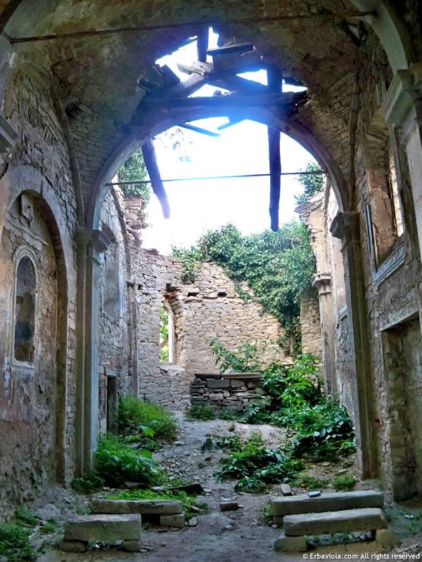 Chiesa grande Castiglioncello - erbaviola.com