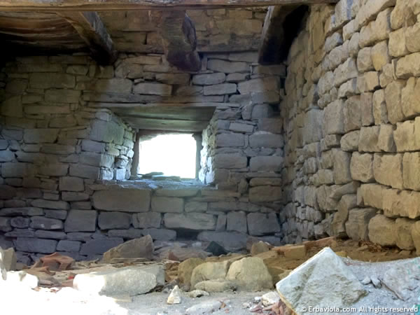 Castiglioncello, interno al piano superiore di una casa - erbaviola.com