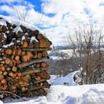 legna sotto la neve - erbaviola