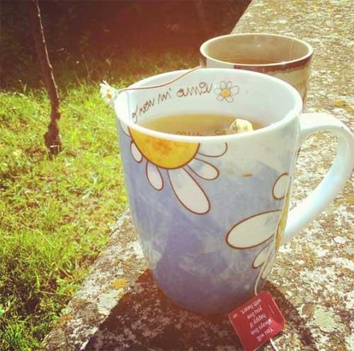 Il coffee break oggi, in giardino