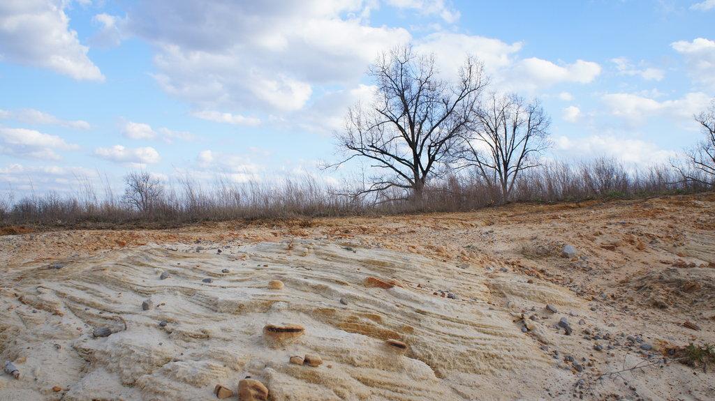 Waste Land by http://nightwhisper67.deviantart.com/